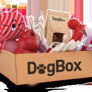 banner_box_b-1